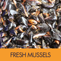 freshmussels button